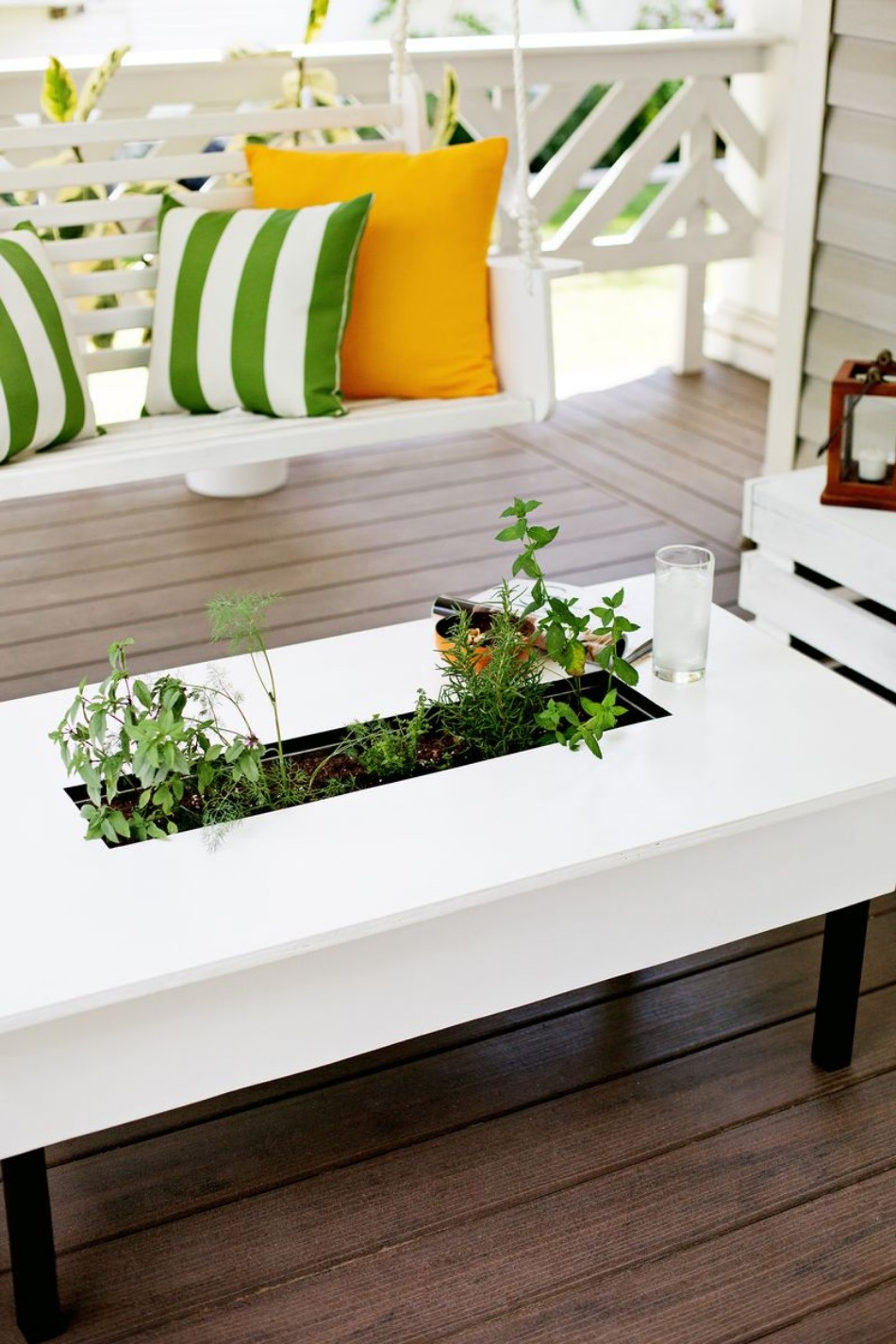 Coffee table Summer Trends: Have a Garden Inside Your Coffee Table 6a00d8358081ff69e201a511efe7e6970c 800wi